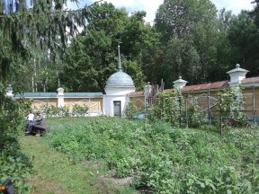 Garden Inside Skete Walls