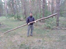Straight Fallen Trees for Soccer Goals